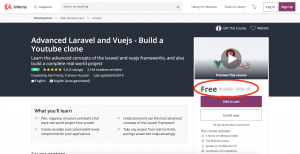 laravel vue Free Udemy course