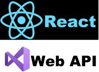 reactjs and web api free udemy course